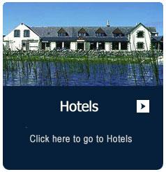 description-box-hotels