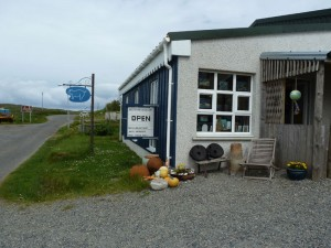Blue Pig Gallery Arts and Crafts
