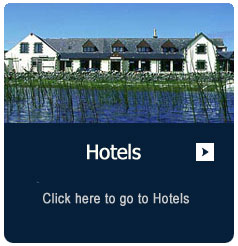 description-box-hotels