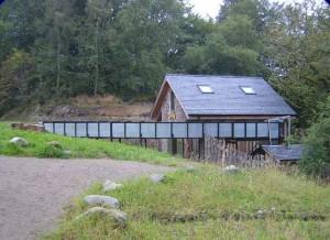 Lattas Mill Side